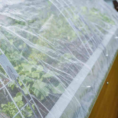 hochbeet mit insektenschutznetz